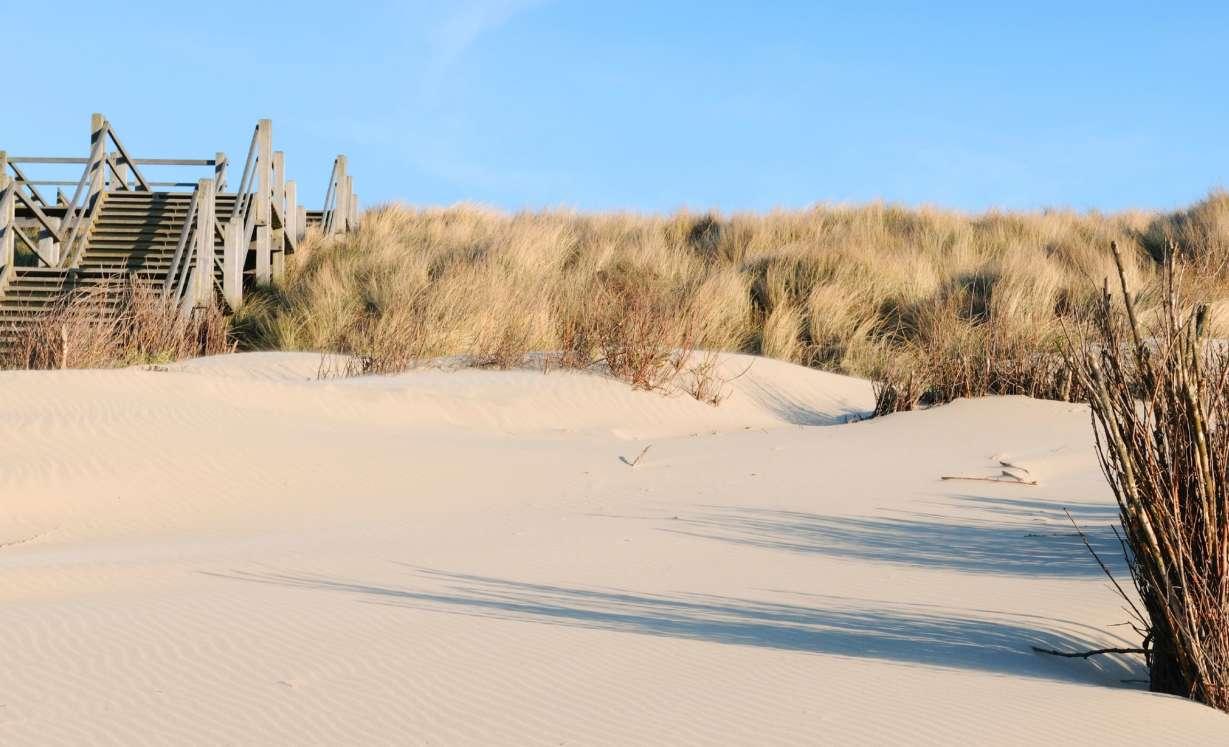 Campings sur la côte Belgique | BestCamp